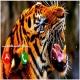 Lion Roar Pagalworld Ringtone