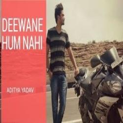 Deewane Hum Nahi Hote Ringtone